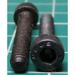 Screw, M4x25, Cheese Head, Hex, Black Finish