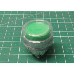 P24329, Green